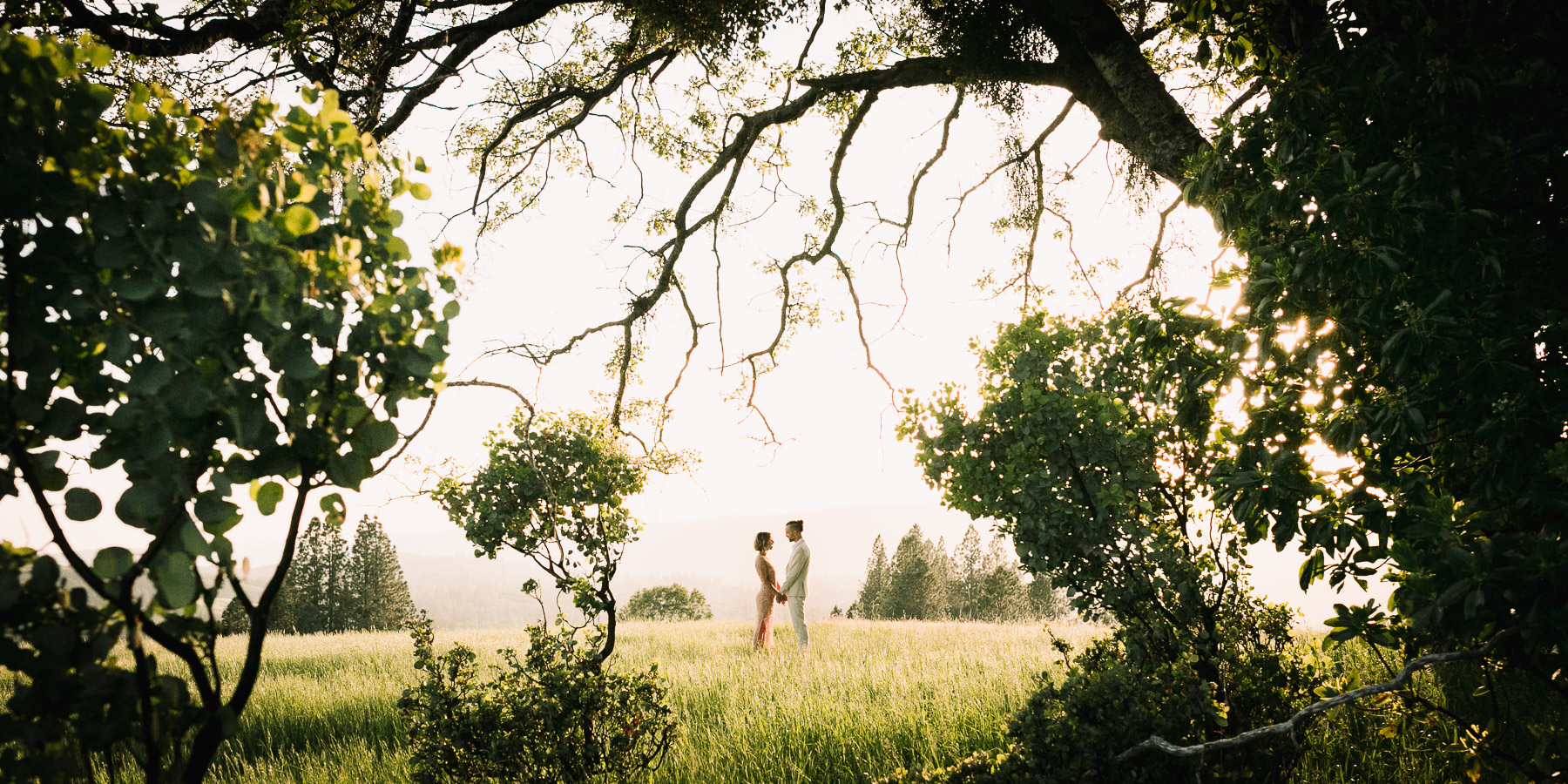 Engaged couple hold hands in a meadow at sunset. Azara Images Wedding Photographer